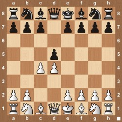 Queens Gambit - The Chess Website